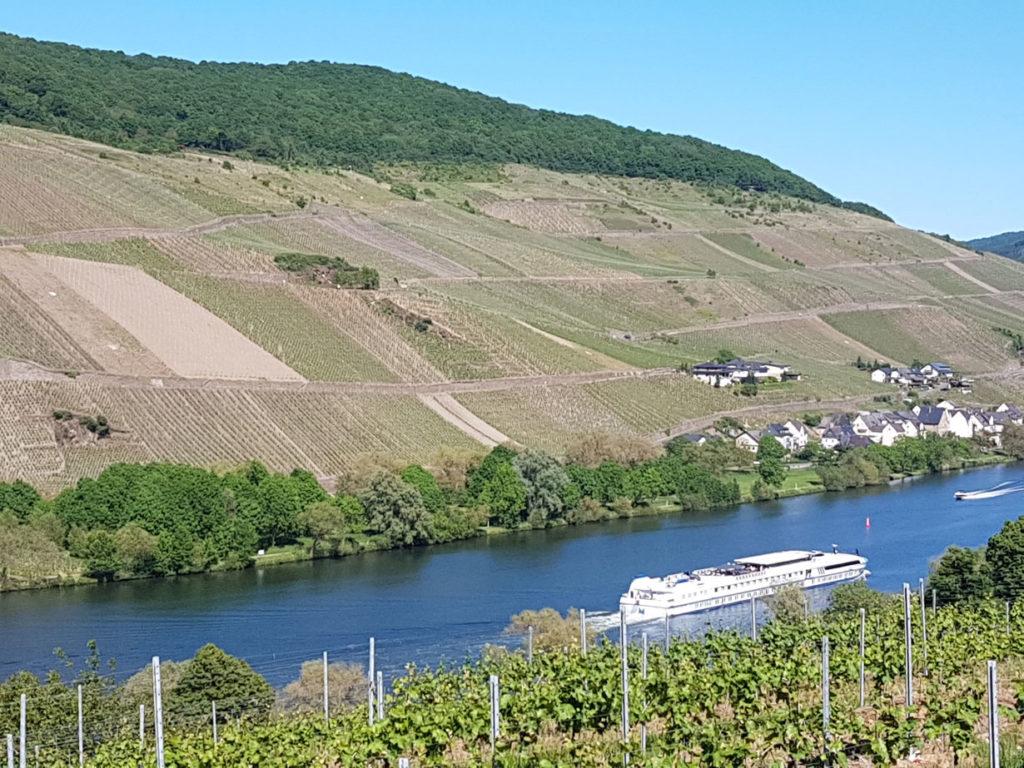 Nicht nur der Wein lockt Genießer an die Mosel, auch die Landschaft ist wunderschön